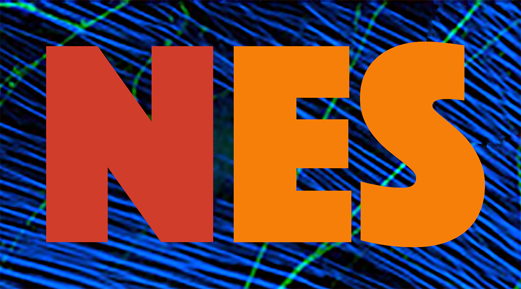 Logo of the Neuroscience Experiments System